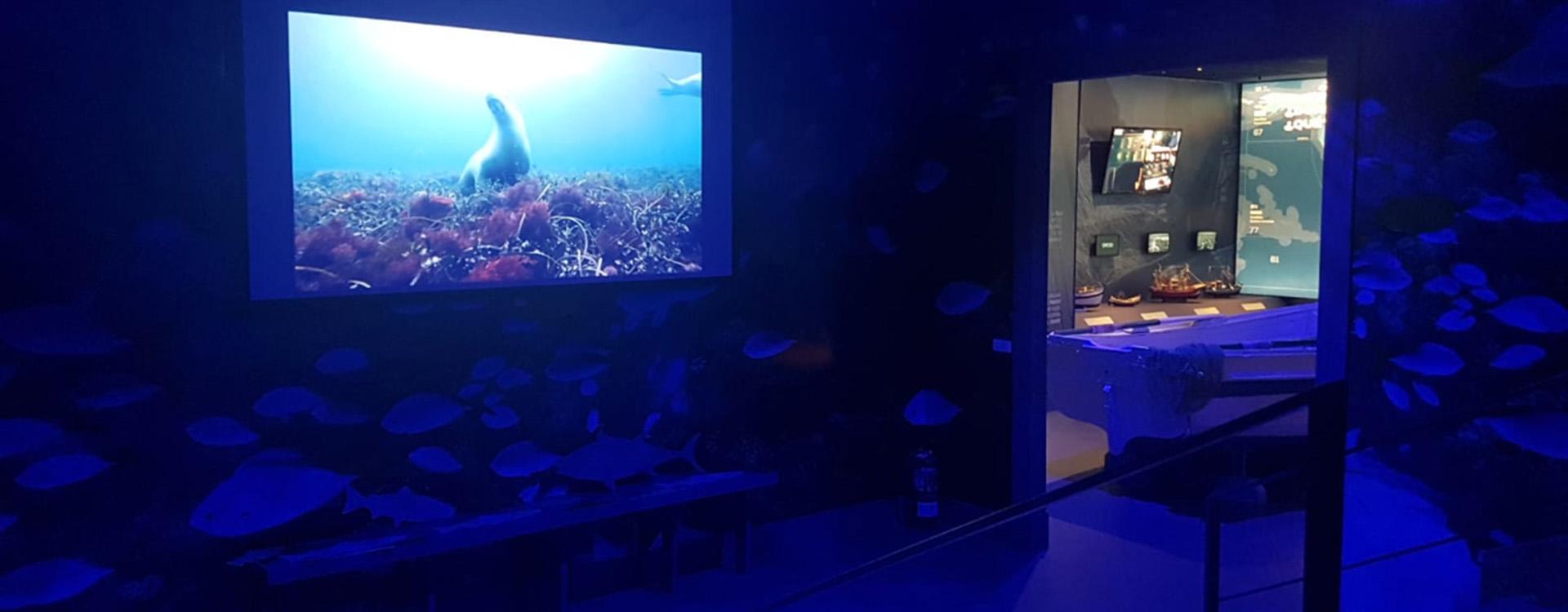 Centre Interactiu del Peix a Mercamadrid